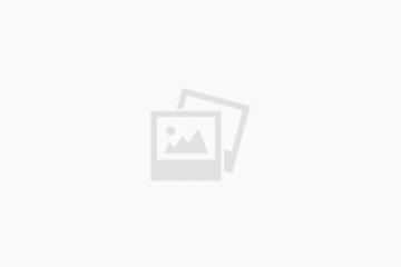"""פלתורס מוניציפלית סוכנות לביטוח כללי בע""""מ"""
